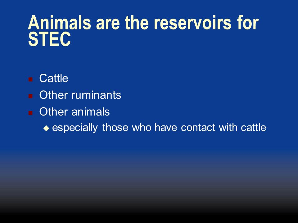 Animals are the reservoirs for STEC
