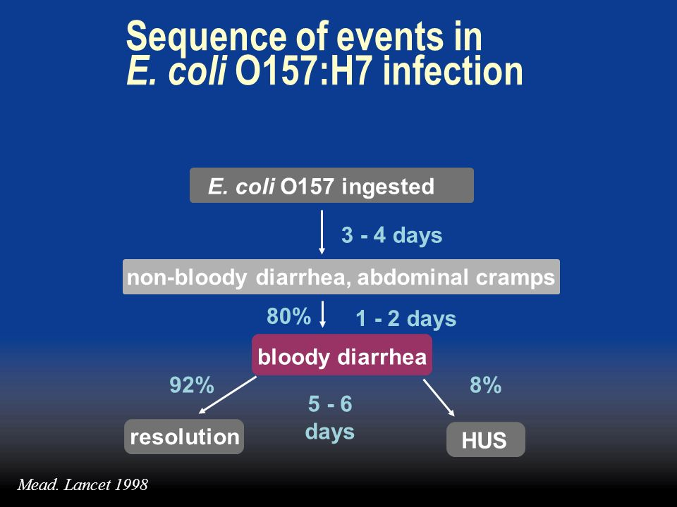 Sequence of events in E. coli O157:H7 infection