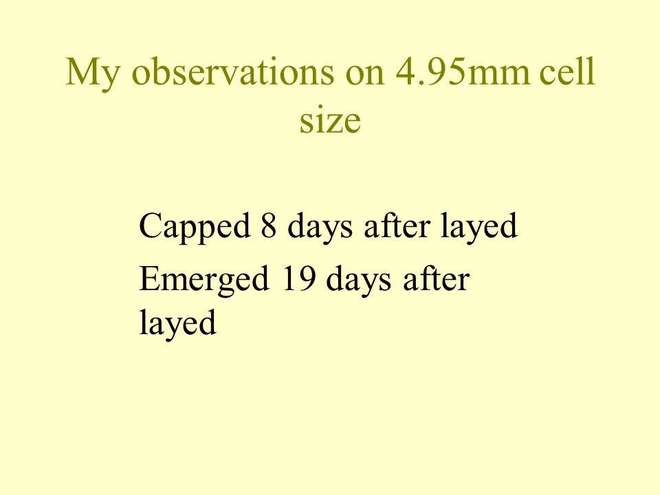 My observations on 4.95mm cell size