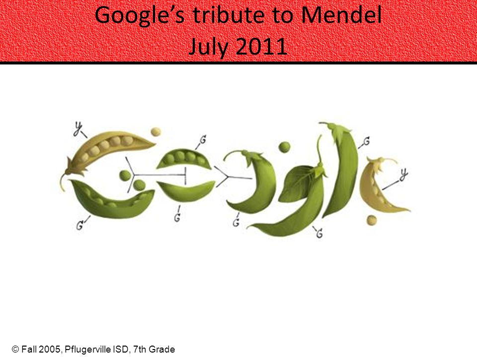 Google's tribute to Mendel July 2011