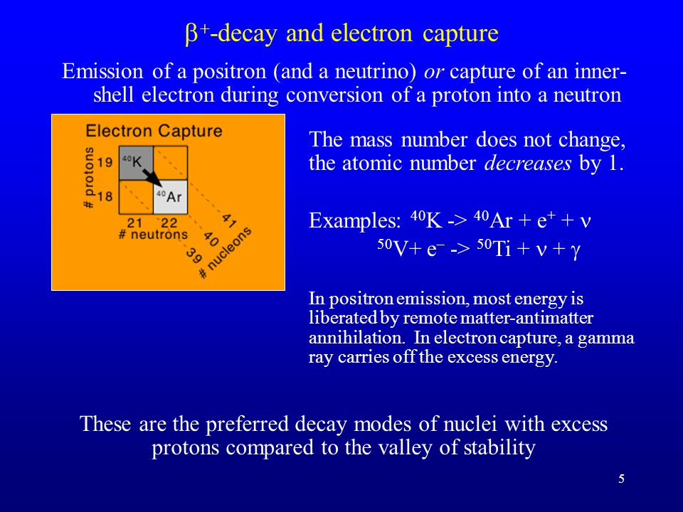 b+-decay and electron capture