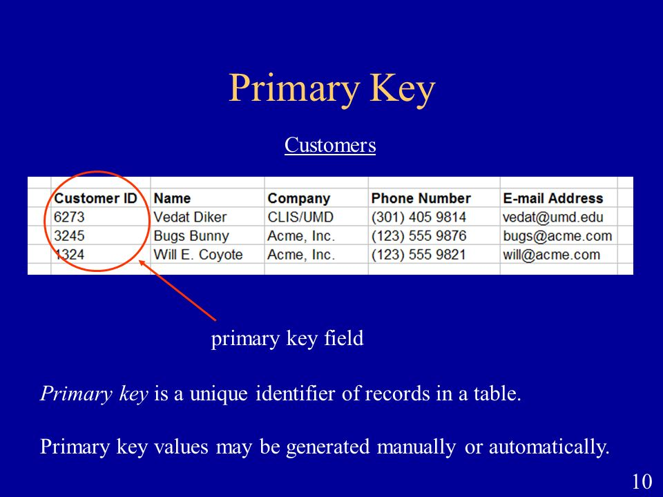 Primary Key Customers primary key field