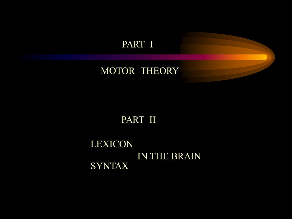 PART I MOTOR THEORY PART II LEXICON IN THE BRAIN SYNTAX