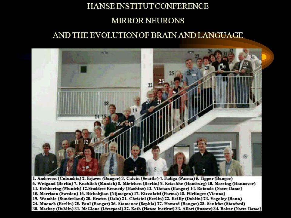 HANSE INSTITUT CONFERENCE MIRROR NEURONS