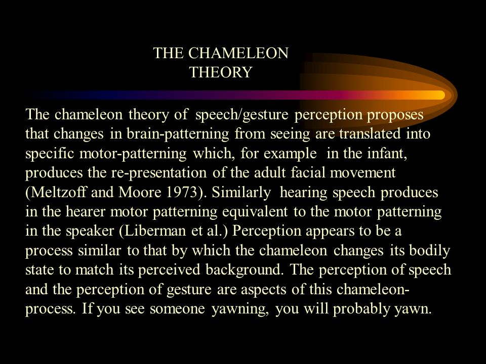 THE CHAMELEON THEORY