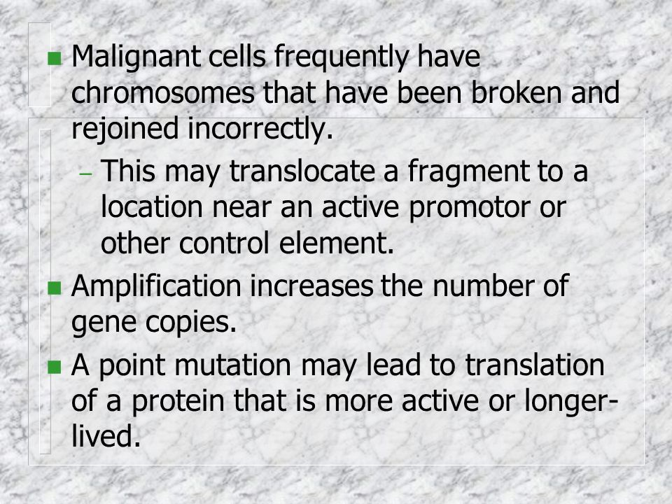 Malignant cells frequently have chromosomes that have been broken and rejoined incorrectly.