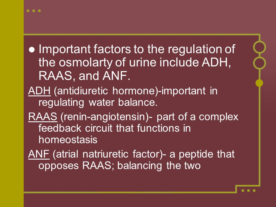 Important factors to the regulation of the osmolarty of urine include ADH, RAAS, and ANF.