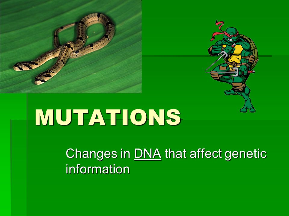 Changes in DNA that affect genetic information