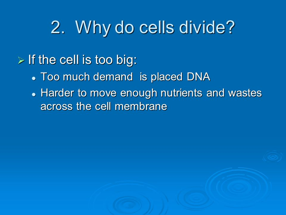 2. Why do cells divide If the cell is too big: