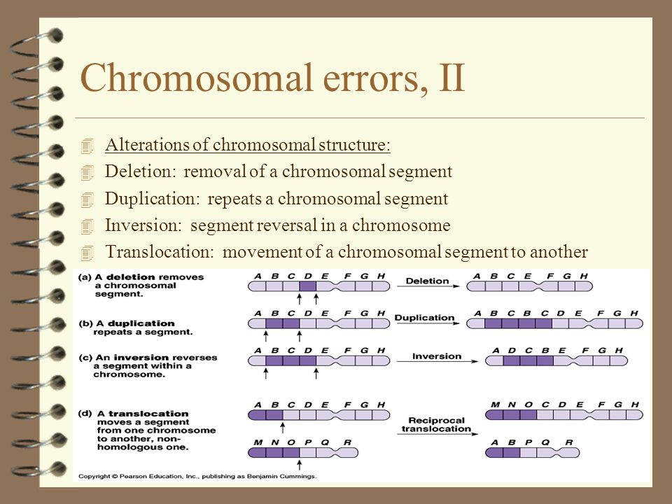 Chromosomal errors, II Alterations of chromosomal structure: