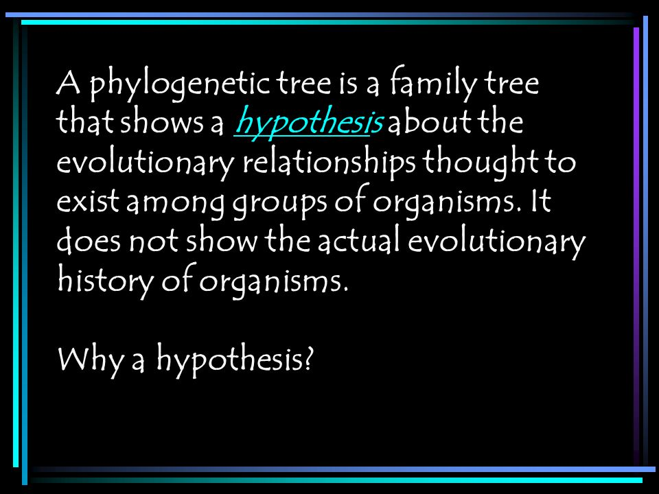 A phylogenetic tree is a family tree that shows a hypothesis about the evolutionary relationships thought to exist among groups of organisms. It does not show the actual evolutionary history of organisms.
