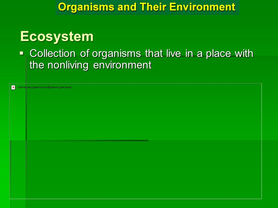 Ecosystem Collection of organisms that live in a place with the nonliving environment Ecosystem