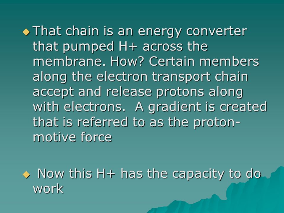 That chain is an energy converter that pumped H+ across the membrane