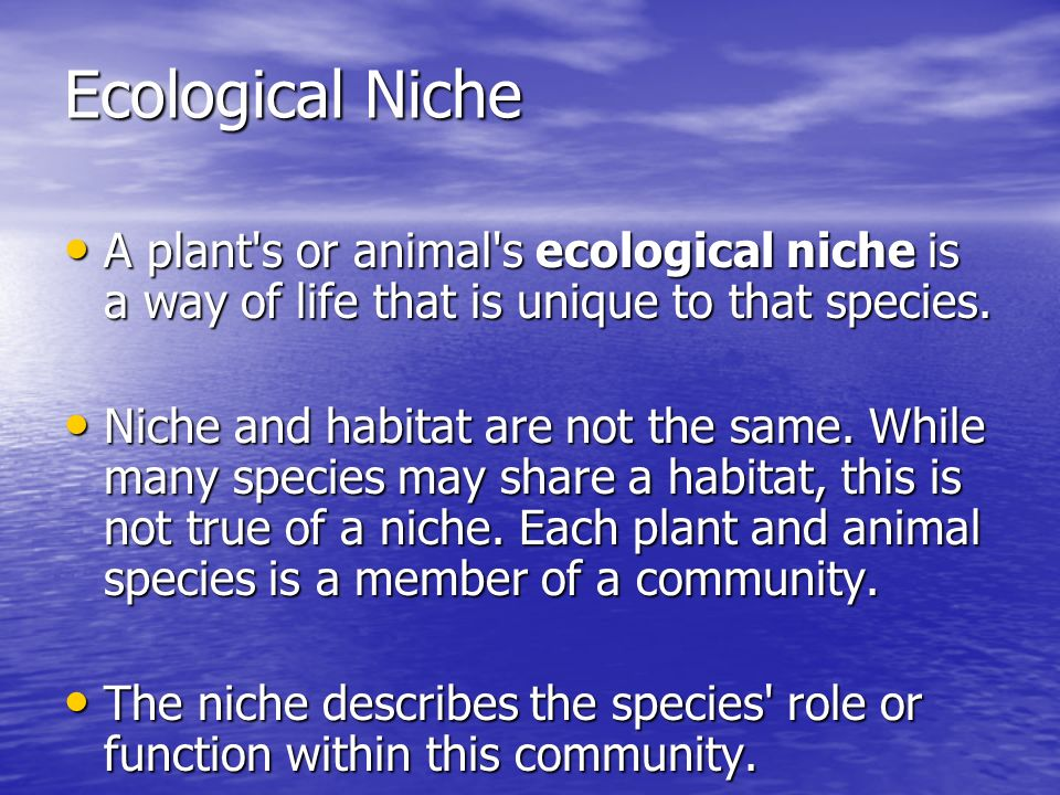 Ecological Niche A plant s or animal s ecological niche is a way of life that is unique to that species.
