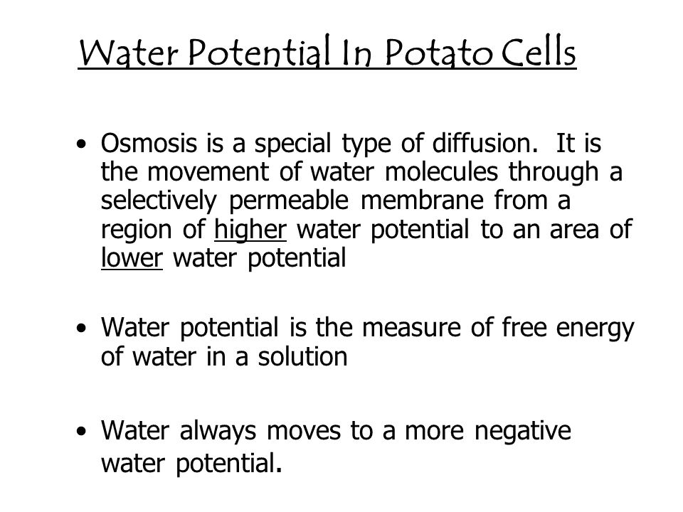 Water Potential In Potato Cells