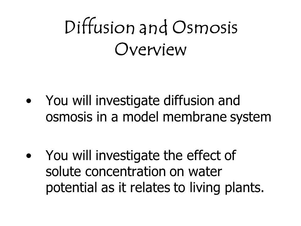 Diffusion and Osmosis Overview