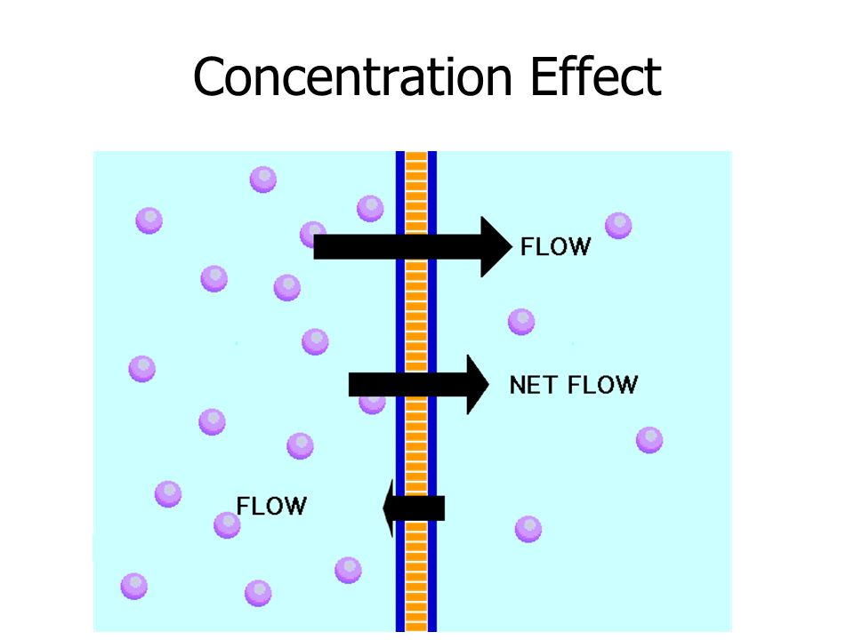 Concentration Effect