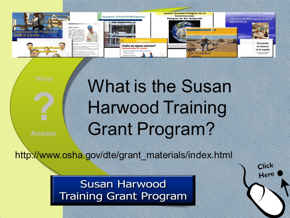 What is the Susan Harwood Training Grant Program