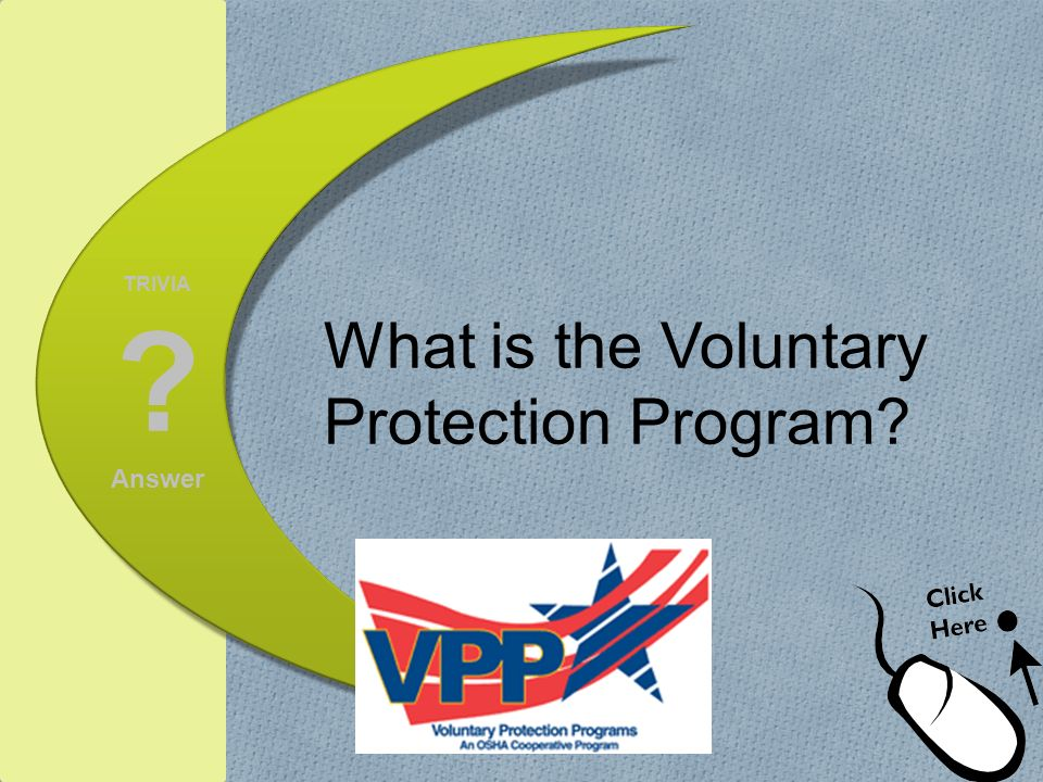 What is the Voluntary Protection Program