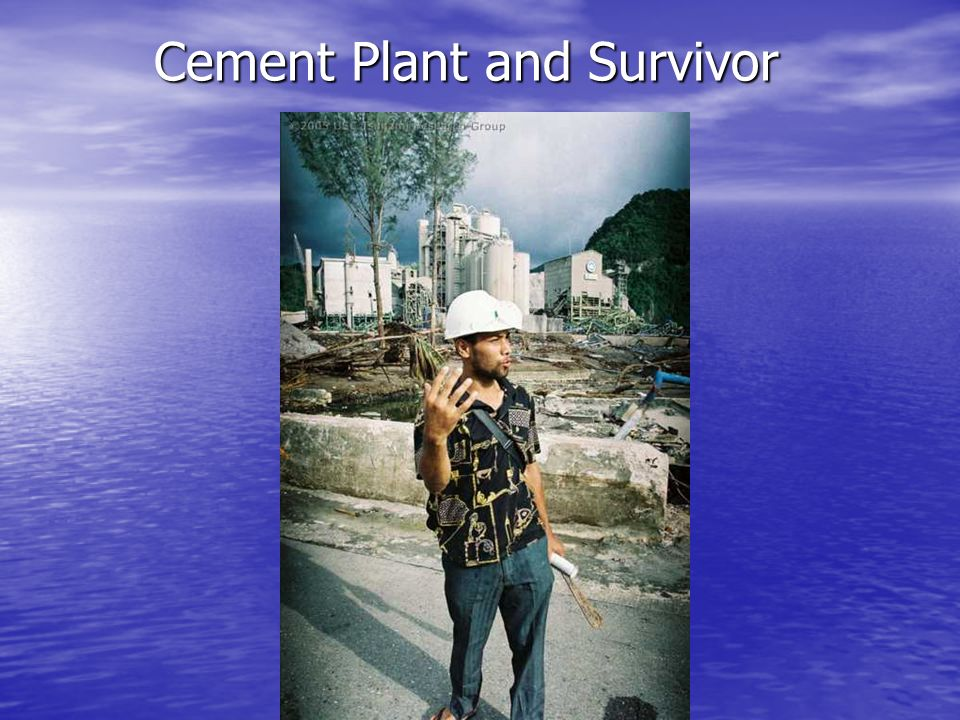 Cement Plant and Survivor