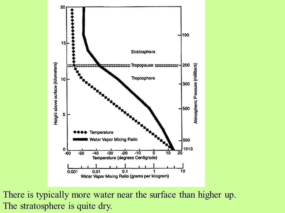 There is typically more water near the surface than higher up