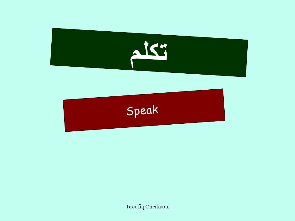 تكلم Speak Taoufiq Cherkaoui 17