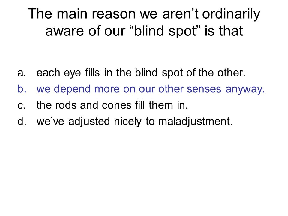 The main reason we aren't ordinarily aware of our blind spot is that