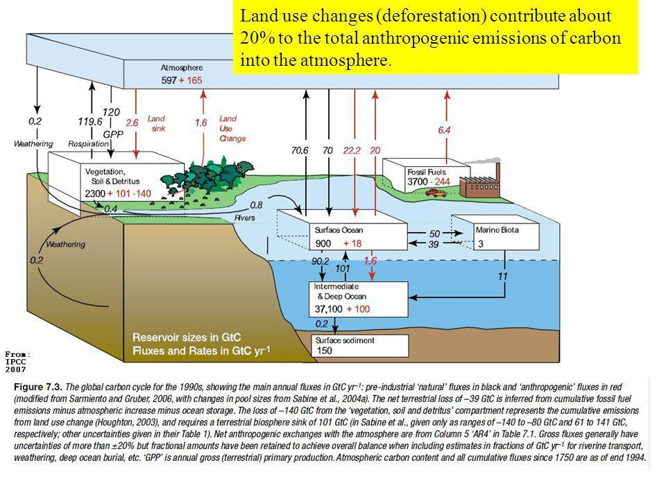Land use changes (deforestation) contribute about 20% to the total anthropogenic emissions of carbon into the atmosphere.