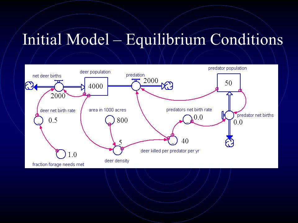 Initial Model – Equilibrium Conditions