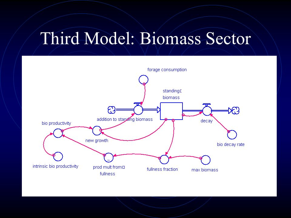 Third Model: Biomass Sector