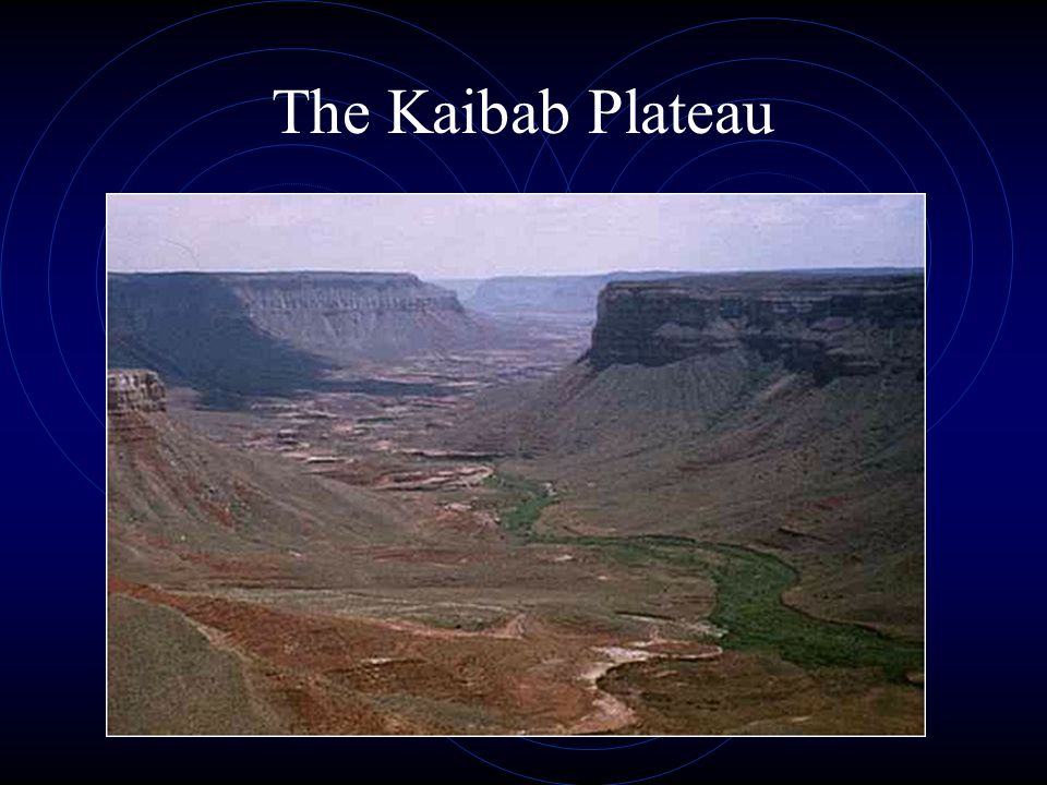 The Kaibab Plateau