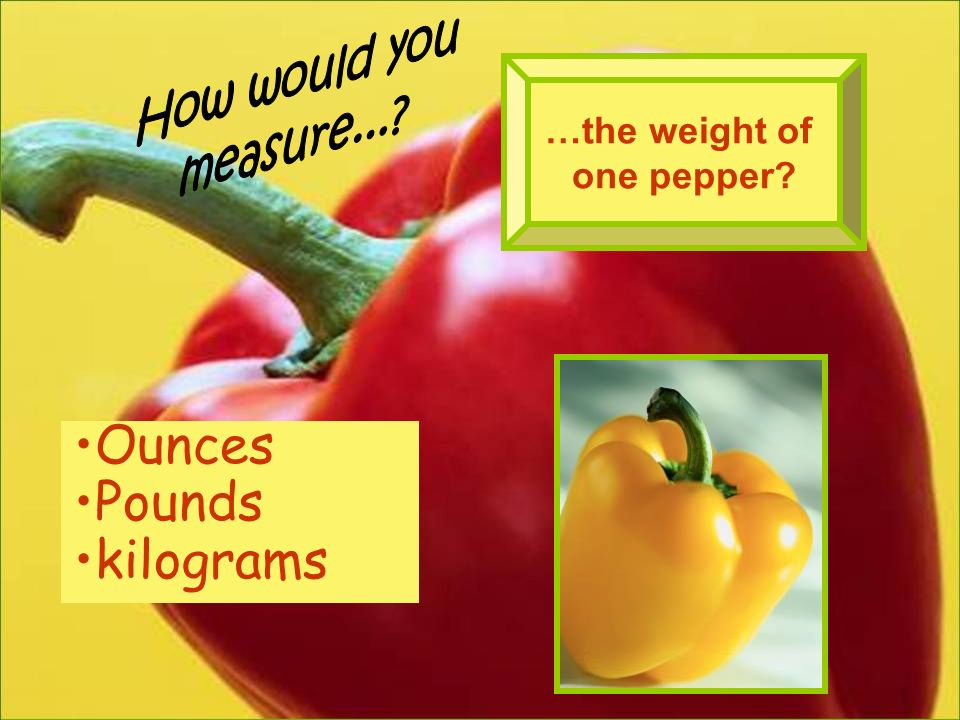 Ounces Pounds kilograms How would you measure... …the weight of