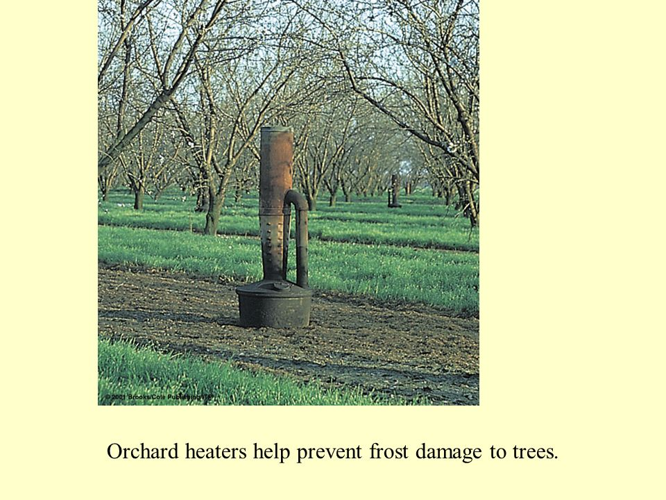 Orchard heaters help prevent frost damage to trees.