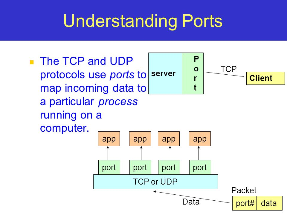 Understanding Ports The TCP and UDP protocols use ports to map incoming data to a particular process running on a computer.