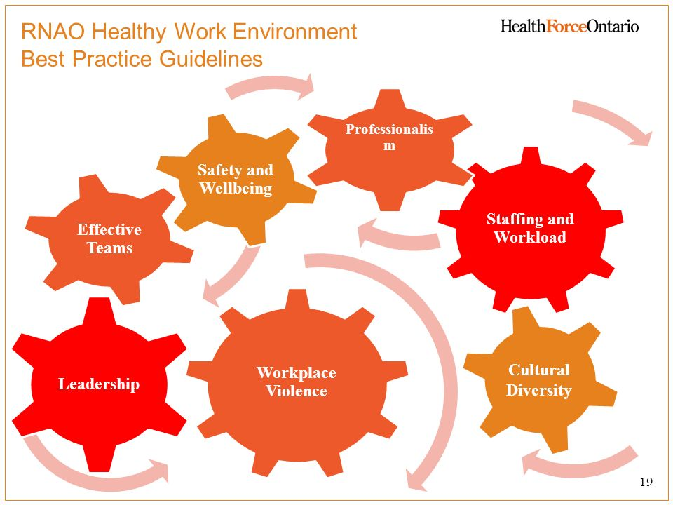 RNAO Healthy Work Environment Best Practice Guidelines