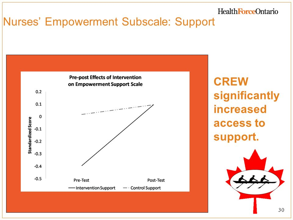Nurses' Empowerment Subscale: Support