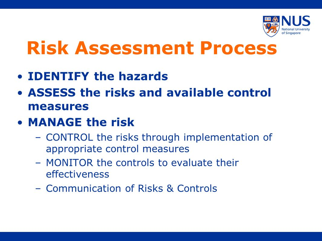 Risk Assessment Process