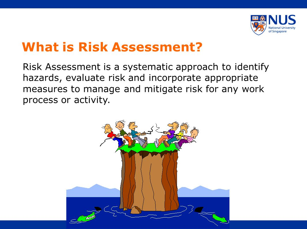 What is Risk Assessment