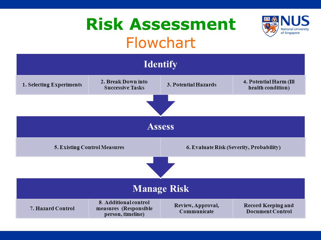 Risk Assessment Flowchart