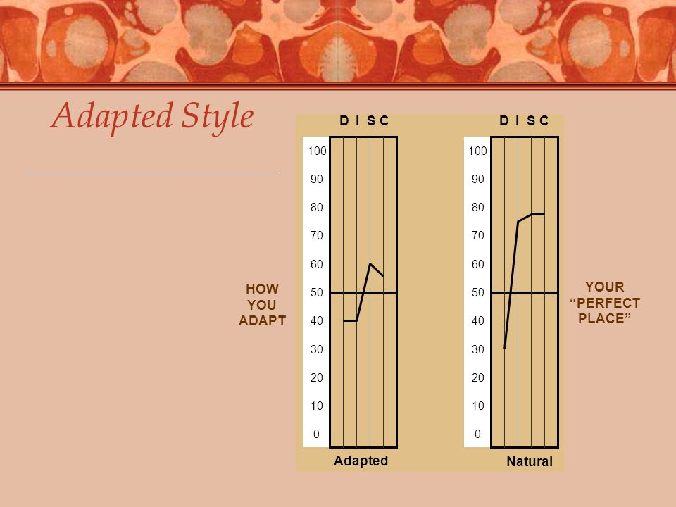 Adapted Style D I S C Adapted Natural HOW YOU ADAPT