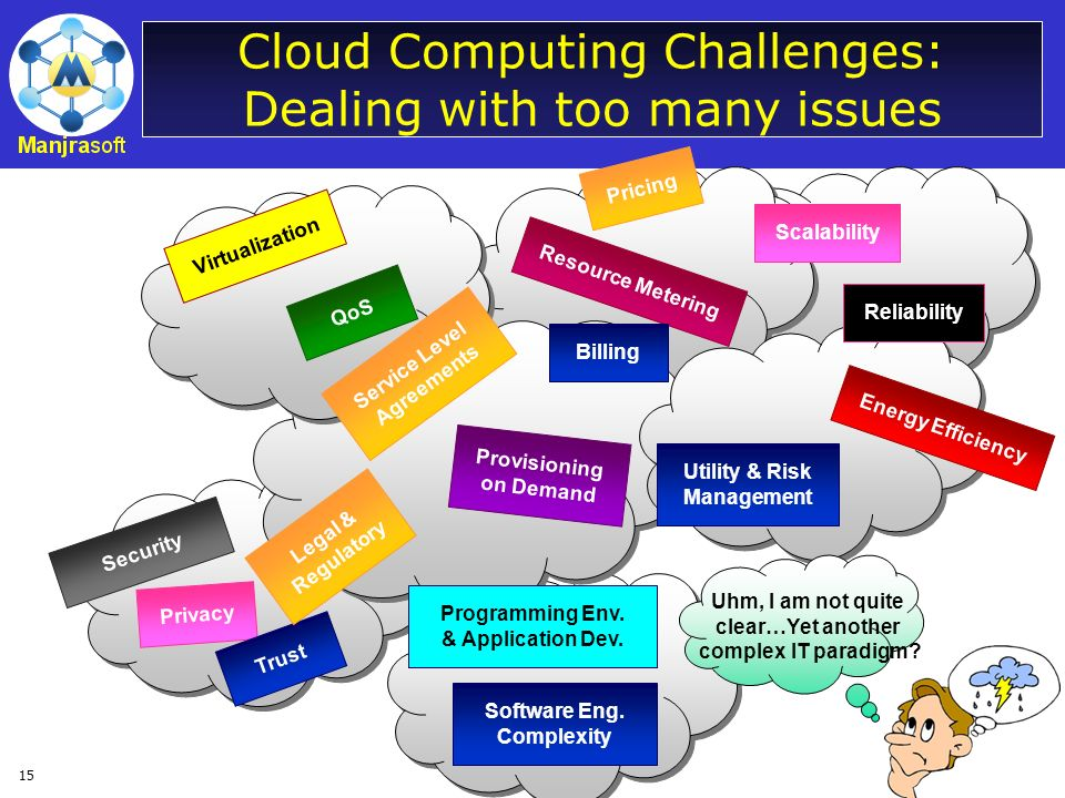 Cloud Computing Challenges: Dealing with too many issues