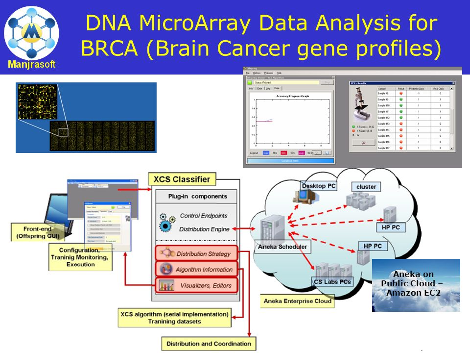 DNA MicroArray Data Analysis for BRCA (Brain Cancer gene profiles)
