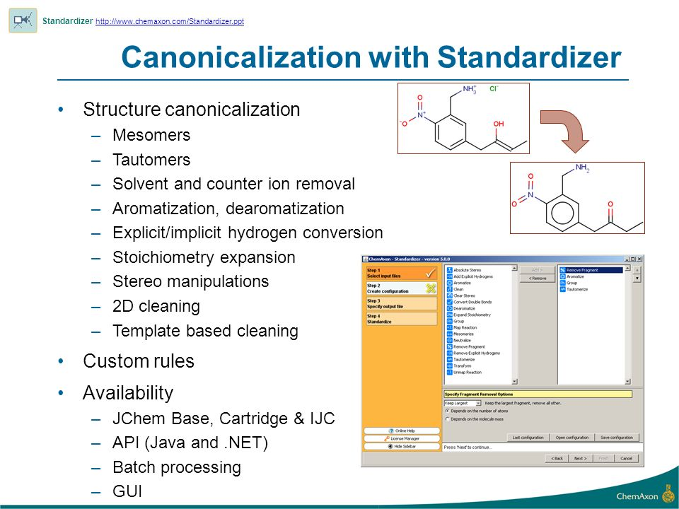 Canonicalization with Standardizer