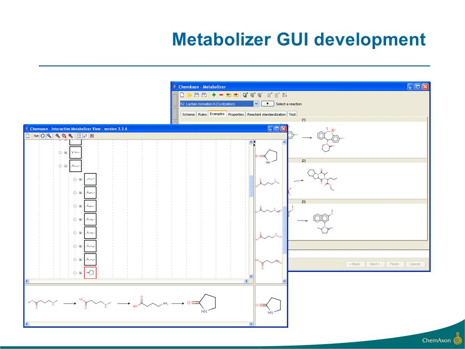 Metabolizer GUI development