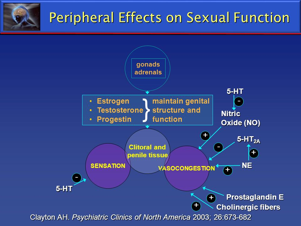 Peripheral Effects on Sexual Function