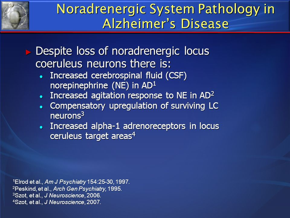 Noradrenergic System Pathology in Alzheimer's Disease