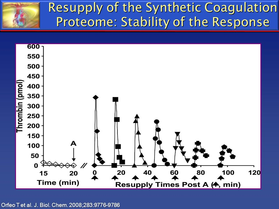 Resupply of the Synthetic Coagulation Proteome: Stability of the Response