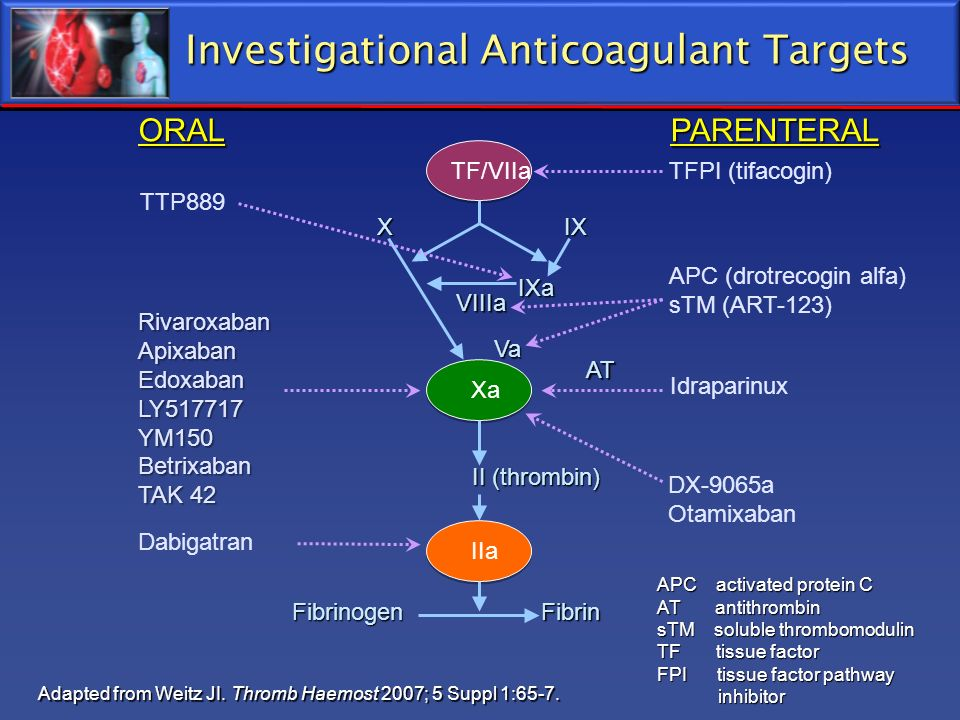 Investigational Anticoagulant Targets