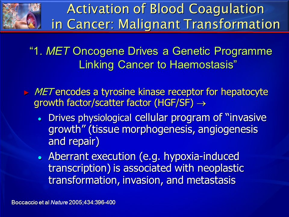 Activation of Blood Coagulation in Cancer: Malignant Transformation