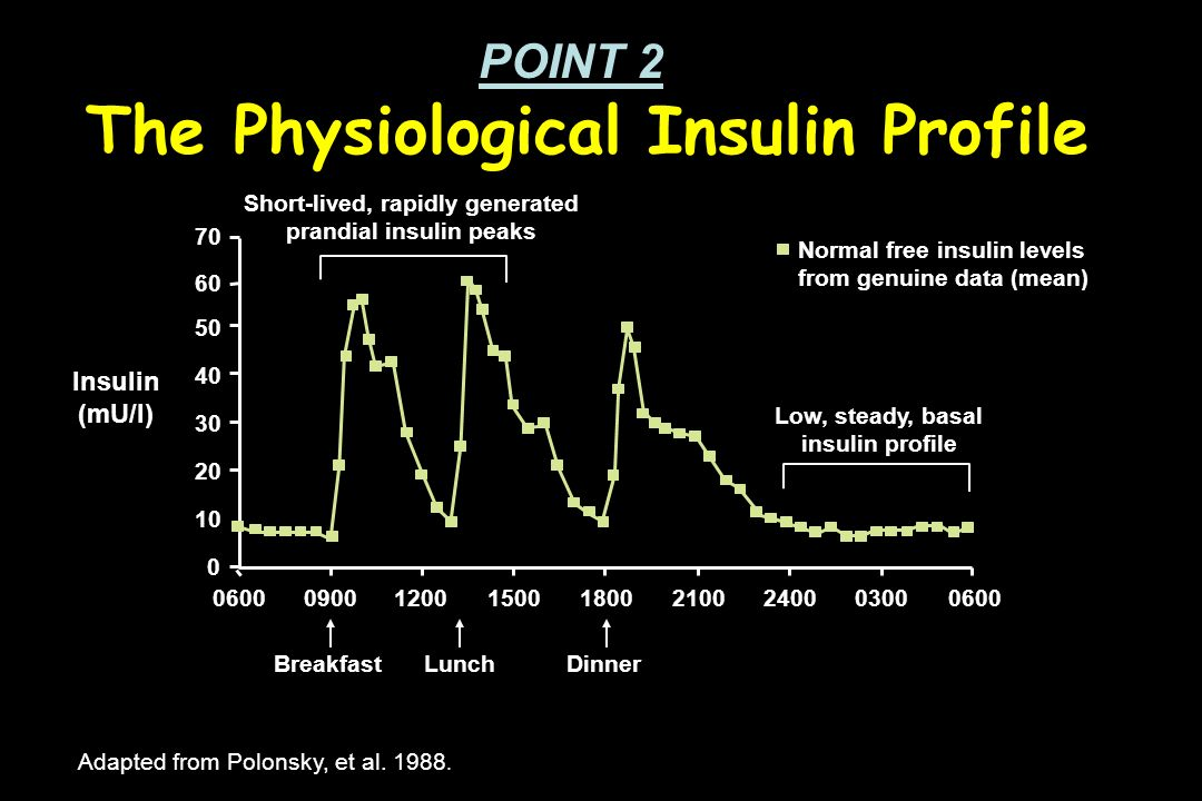 The Physiological Insulin Profile